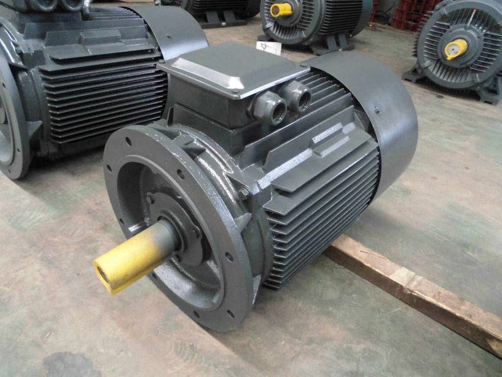 Vertical motor and thrust bearing
