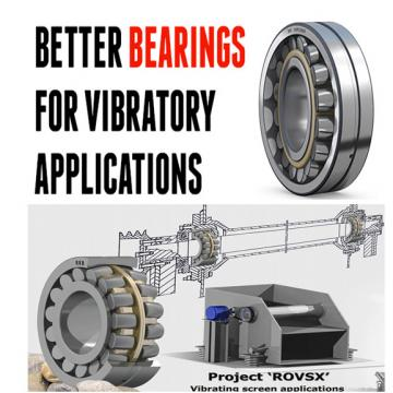 FAG Vibratory Machinery Roller Bearings 16076